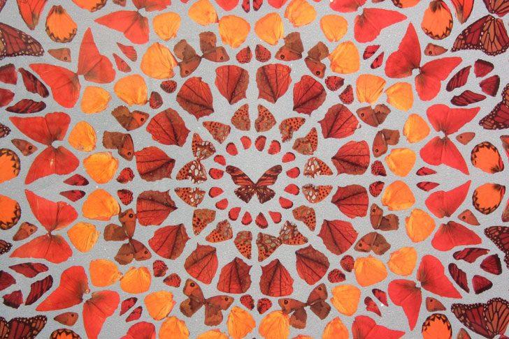 SHORT STORY   A Kaleidoscope of Butterflies