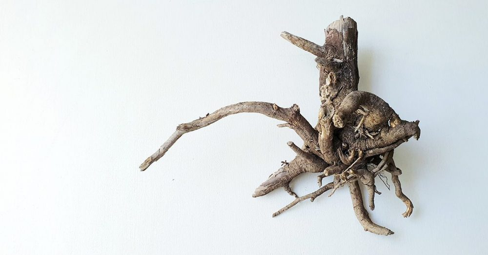 POETRY | Driftwood by Krishen Mohan